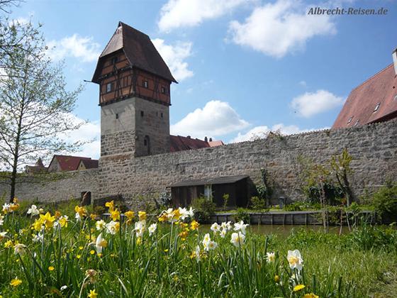 Bild des Monats: April 2018 - Frühling in Dinkelsbühl
